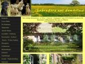 <title>Labradore Joetten Menslage | Labrador, Labradorzucht, Hundezucht, Welpen, Labrador-Welpen, Labrador Züchter, Blindenführhund, Blindenführhunde, Behinderten Hilfshund, Jagdhund, Diabetiker Warnhund, Theapiehund, Apportier Hund, Familien Hund, Hunde,